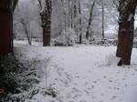 Das schöne Ammerland im Winter